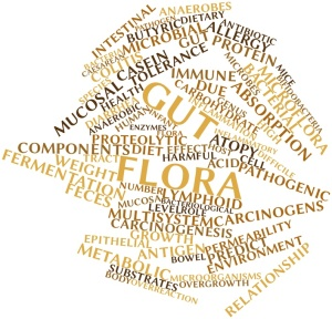 Abstract word cloud for Gut flora with related tags and terms